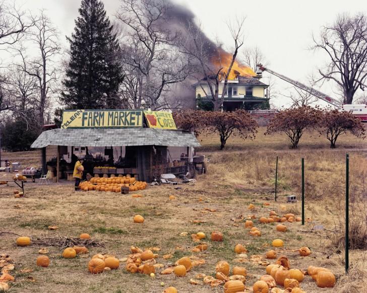 Joel Sternfeld: McLean Virginia, 1978