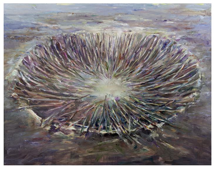 Franziska Klotz: Krater