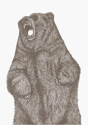 Arran Gregory: Slam Bear