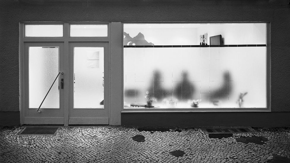 Loredana Nemes, 2008: Beyond. Verein ADS