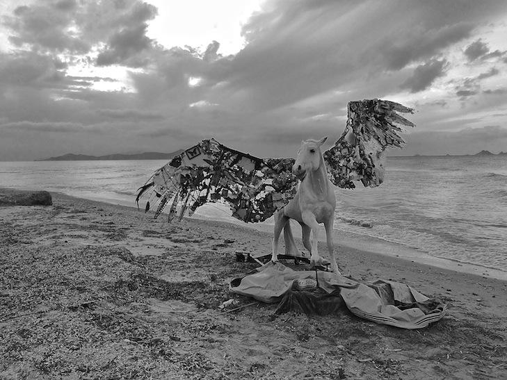 Pegasus - Mia Florentine Weiss - Photo credit: Mia Florentine Weiss