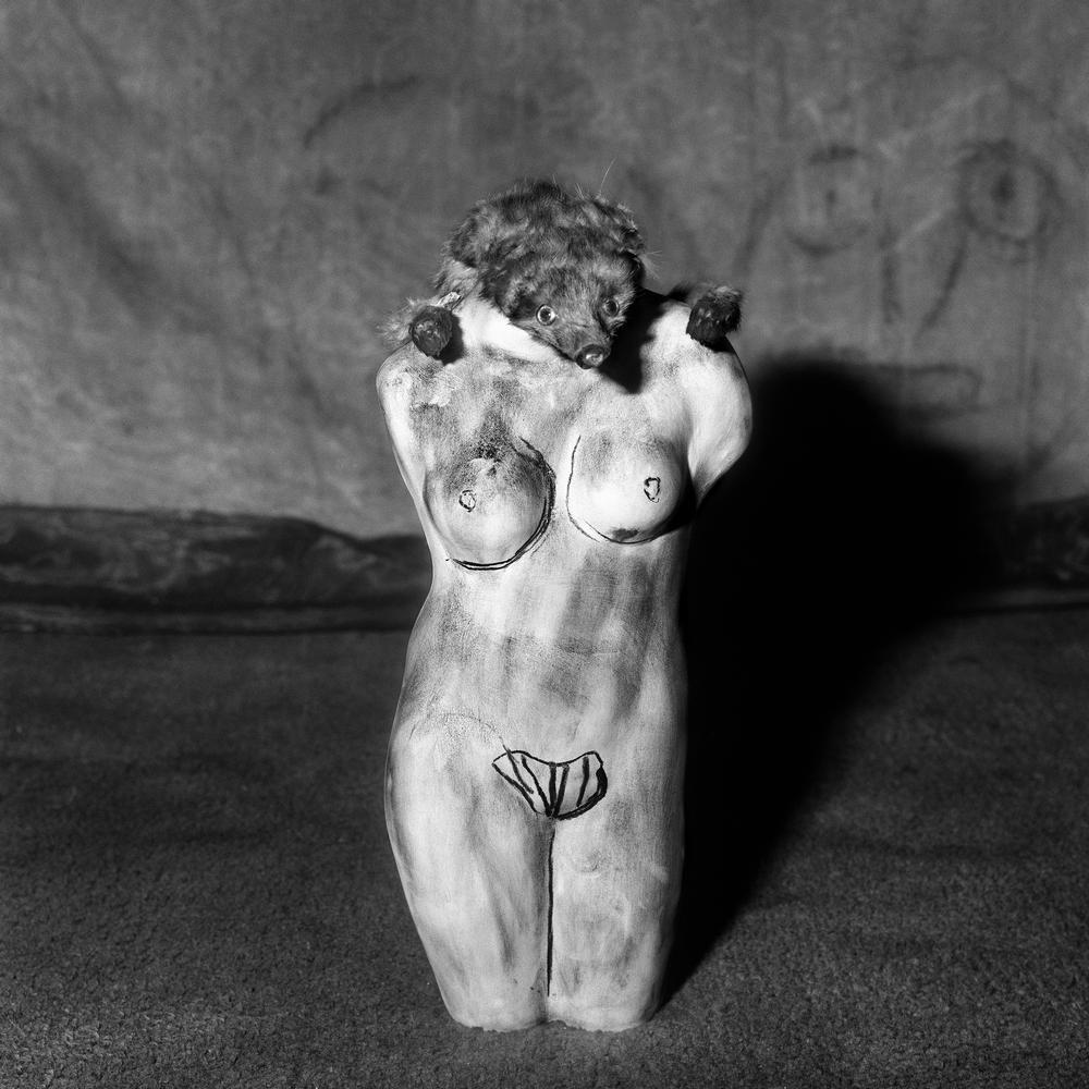 Roger Ballen: Metamorphosis, 2006, copyright Roger Ballen