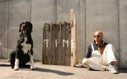 Peter Gruenzweil_Portrait_Hund_Akademie