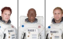Melhus 2009 Mars Survivors (Tryptich)-Web