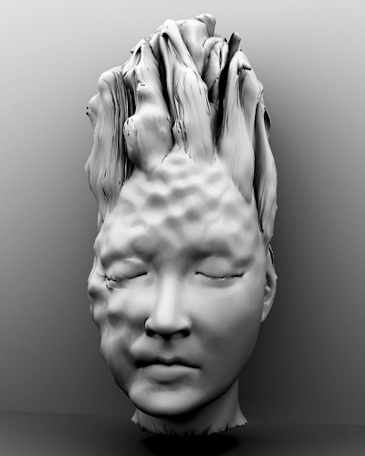 Medusa, inkjet print of a virtual model on paper, edition 6, size variable, 2011