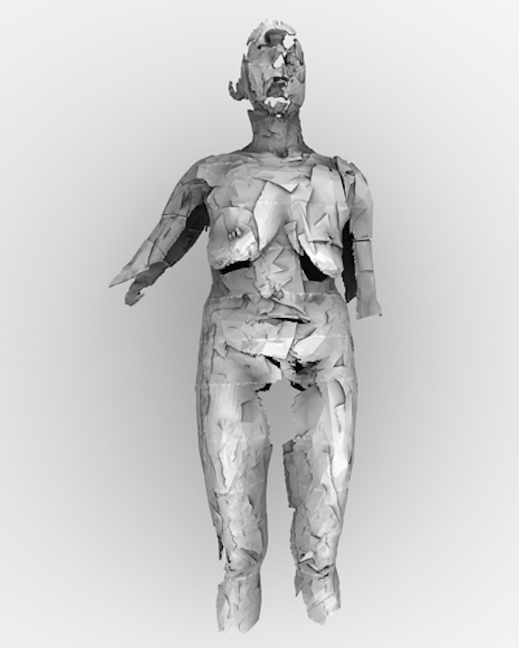 Self Scanning, inkjet print of a virtual model on paper, edition 6, size variable, 2014